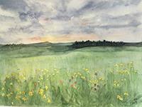 Pam Shay, Summer Meadow, watercolor, 16x20, $150